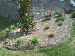 rock landscaping nolensville before